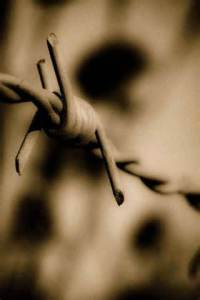 Image Source: http://theharmoniouship.blogspot.com/