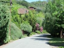 Toward Mill Valley