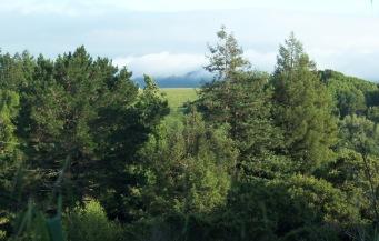 County Park 2016 2