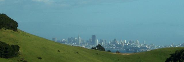 SF Skyline 2016