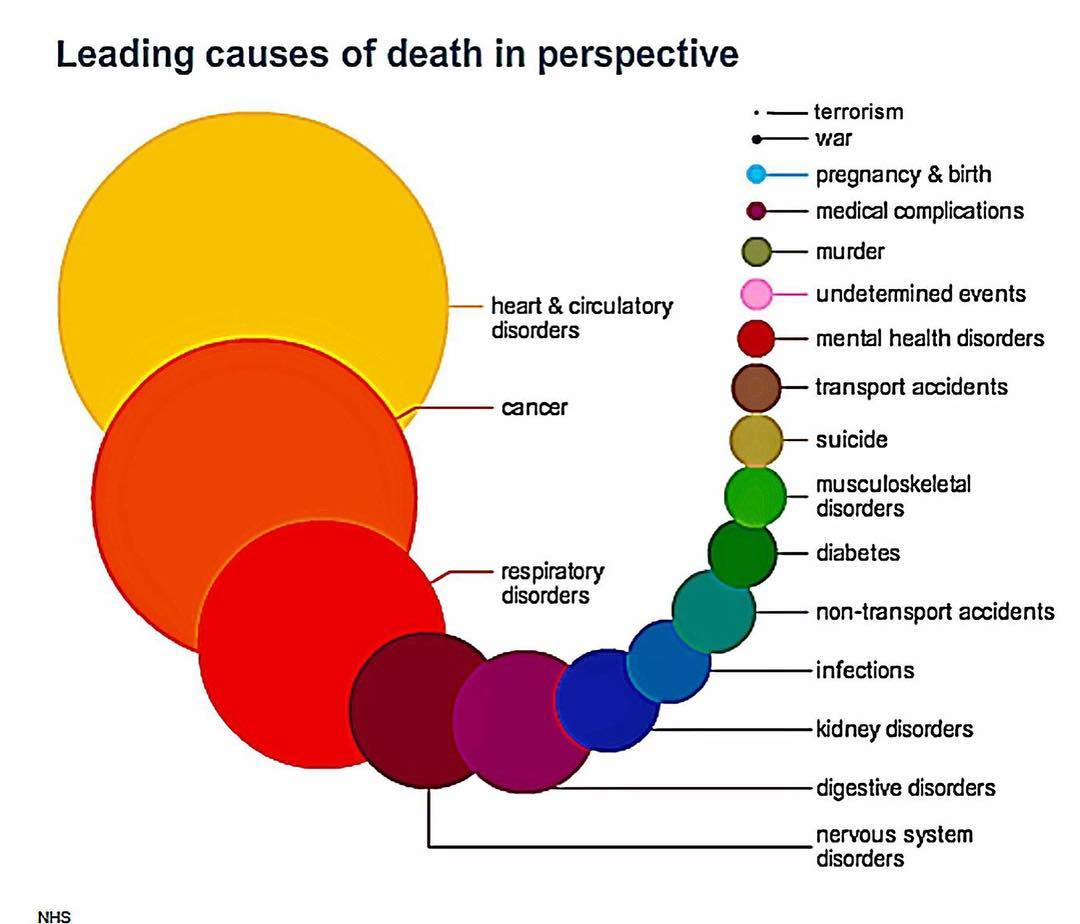 Chance of Death Graph